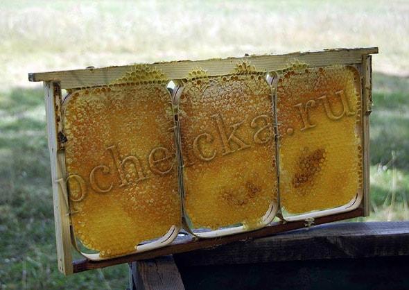 Секционный мёд